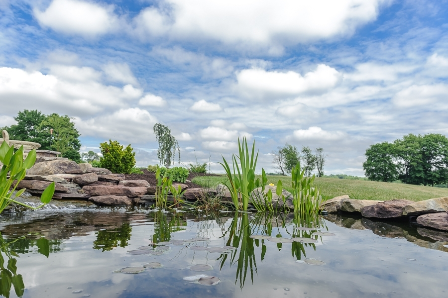 Riverview Ponds, Waterfalls, and Water Features
